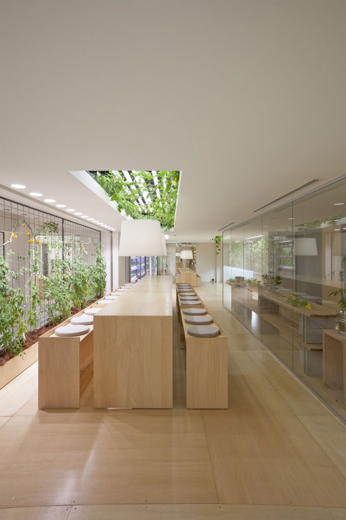 Urban Farm at Pasona Tokyo Headquarters ideasgn31 Yoshimi Kono