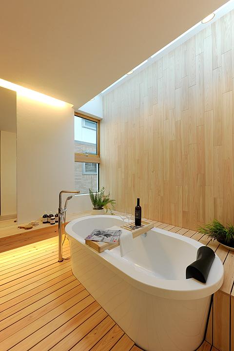 Eco Metaphys House Bathroom in Japan