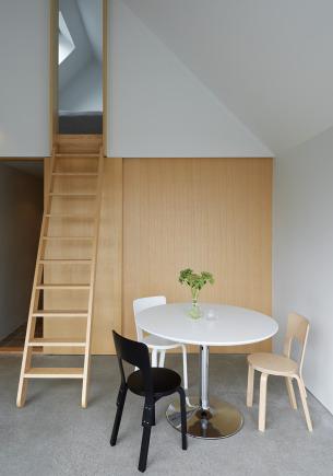 Thin ladder to attic