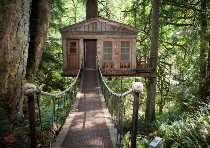 树上的房子 by TreeHouse Point