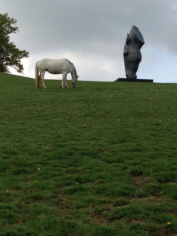Nic Fiddian Green Horse Head Sculptures 013