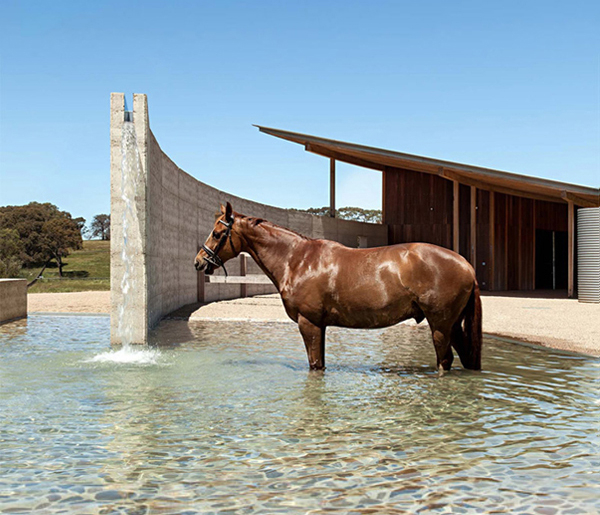 Equestrian Centre and Spa in Mornington